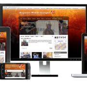 cilj web sajta